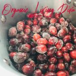Orange Blossom Cranberry Sauce