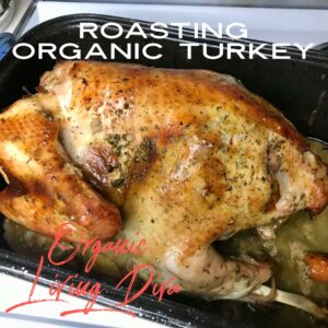How to Roast a Succulent Turkey!